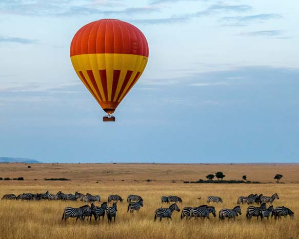 20 Days Best of Kenya and Beach Safari Experience