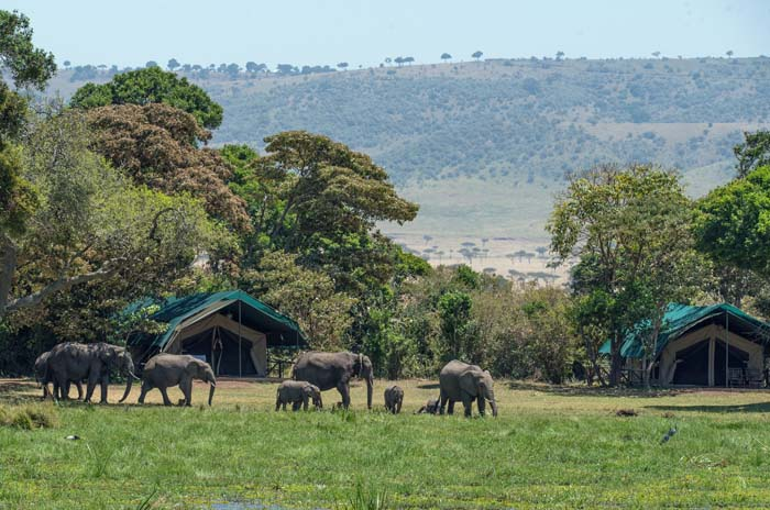 19 Days East Africa Safari Explorer