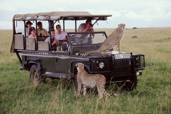 17 Days Best of East Africa Safari Explorer